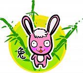 Cartoon Chinese Zodiac - Rabbit (Vector)