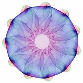image of plasmatic  - Plasmatic mandala isolated on the white background - JPG