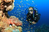 Scuba Diver observes a Scorpionfish on a coral reef in the Red Sea