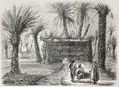 Old illustration of artesian well in Tamerna Kedima, Algeria, Created by Gaildrau, published on L'Il