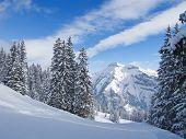 Winter in swiss alps (Elm, Glarus, Switzerland)