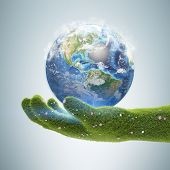 Big Grass Hand Holding Earth Over Gray Background. Concept Of Ecology And Environmental Protection.  poster