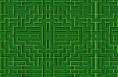 close up shot of a green labyrinth