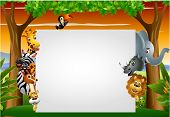foto of rhino  - vector illustration of funny animal cartoon set with blank sign - JPG