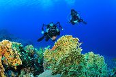 Couple Scuba Diving and taking underwater photos on a coral reef
