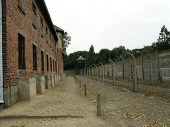 Auschwitz - Last Block Near Enclosure