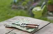 Garden Gloves Clippers Watering Cans