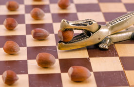 picture of cobnuts  - Gold crocodile crush tool with nut in maw on chess board and cobnuts stan like checkers concept - JPG