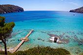 Idyllic View In Mallorca Island