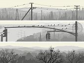 Horizontal Banners Of Flock Birds On Trees And Power Lines.