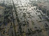 Flood, Aerial View
