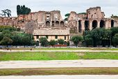 Palatine And Ground Of Circus Maximus In Rome