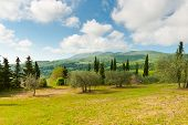 stock photo of apennines  - Farmhouse and Olive Trees on the Slopes of the Apennines Italy - JPG