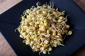 stock photo of bean sprouts  - Pea sprouts on black plate and butcher wood - JPG