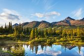 image of denali national park  - Serenity lake in tundra on Alaska - JPG
