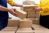 picture of dispenser  - Workers in parcel delivery company preparing a deliver