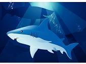 Shark Swimming.eps