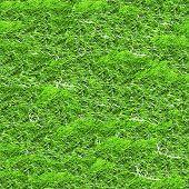 Green grass seamless background.