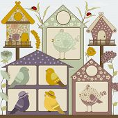 Houses For Birds