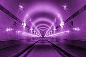 Purple Tunnel