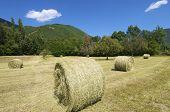 Strohballen in die Pyrenäen