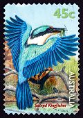 Postage Stamp Australia 1999 Sacred Kingfisher, Bird