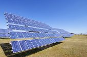 Grupo de paneles solares fotovoltaicos para producir energía eléctrica renovable