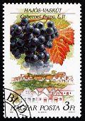 Postage Stamp Hungary 1990 Cabernet Franc, Hajos-vaskut