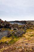 Icelandic Beach With Black Lava Rocks, Snaefellsnes Peninsula, Iceland poster