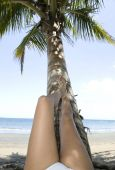 Bikini Girl Resting Legs On Coconut Tree On Tropical Beach