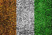 Cote D,ivoiry Flag Color Grass Texture Background
