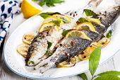 Oven-baked Sea bass with lemon and herbs