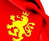Ethnic Macedonian Lion Flag