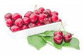 Dark Vinous Cherry Berries Served In Square White Dish