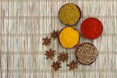 Selection of Indian spices on bamboo mat with copy space