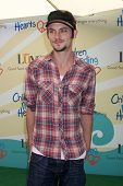 LOS ANGELES - JUN 14:  Shiloh Fernandez at the Children Mending Hearts 6th Annual Fundraiser at Priv