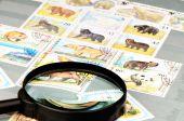Postage Stamp Album