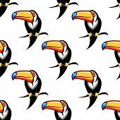 Seamless pattern of a toucan with a big bill