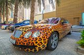 DUBAI, UAE - MARCH 30, 2014: Panther paint Bentley parked outside the Hilton Dubai Hotel on 30 March