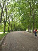Walking pathway in europe