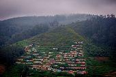Indian Village houses among tea plantations