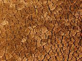 Cracks   Ground  Soil