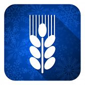 grain flat icon, christmas button, agriculture sign