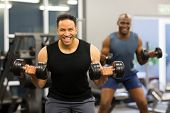 two man doing dumbbell exercise in gym