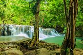 Waterfall With Tree