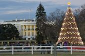 Christmas Tree and White House in Washington DC, United States