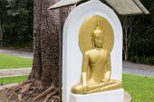 Meditating Golden Buddha Golden Buddha Bas-relief