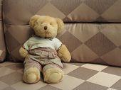 The Bear Doll