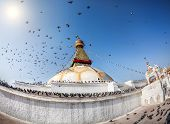 Bodhnath Stupa With Flying Birds