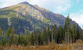 High Tatras Mountains, Slovakia